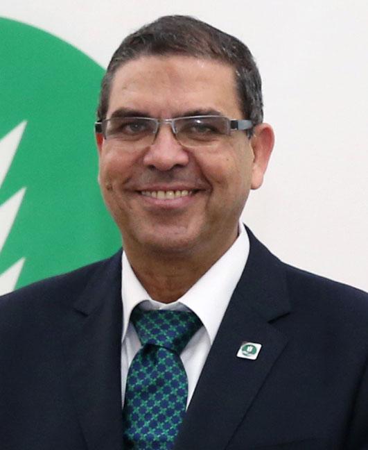 Mohamed Abdelmoneim Shehata